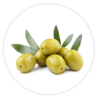 https://www.perten.com/Global/Images/Products/DA%206200/olive_web_industire.png